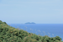 """Koh Larn windmill viewpoint"", near Bangkok"